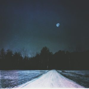 forest-road-moon